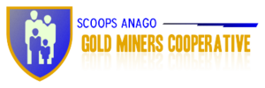 GOLD MINERS COOPERATIVE 3